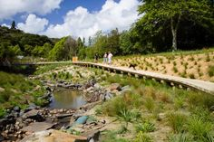 La Rosa Reserve Stream Daylighting- Auckland, New Zealand- Boffa Miskell (BML) What Is Landscape, Park Landscape, Fantasy Landscape, Urban Landscape, Landscape Design, Contemporary Landscape, Garden Design, Landscaping With Rocks, Modern Landscaping