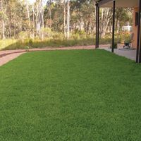 Our gallery of Sir Walter DNA Certified Buffalo Grass, other Instant Turf & Lawn varieties, Recent Projects, Residential and Commercial Instant Turf Projects. Instant Turf, Lawn, Grass, Golf Courses, Gallery, Projects, Log Projects, Blue Prints, Grasses