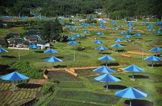 christo. Umbrellas Japan