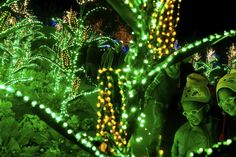 Christmas shows and events around Atlanta to waken your holiday spirit Christmas Shows, Christmas Travel, Christmas Destinations, North Carolina, Special Events, Attraction, Atlanta, Things To Do, Seasons