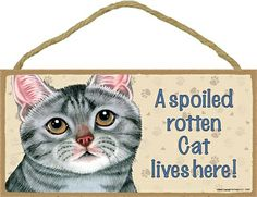 From SJT Made in the USA - A Spoiled Rotten Cat Lives Here wooden plaque. This one is Grey Tabby. Other cat coat colors available - as well as dogs by breed (Harrumph!)