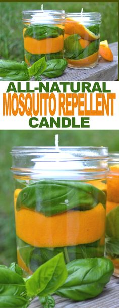 Diy Mosquito Repellent, Fly Repellant, Natural Mosquito Repellant, Insect Repellent, Mosquito Trap, Repelir Mosquitos, Keeping Mosquitos Away, Mason Jar Candles, Floating Candles