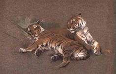 Pair of tigers by Arthur Wardle