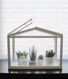 Ikea SOCKER decoration idea. Miniature greenhouse. #IKEA #DECORATION #INTERIOR #HOME #GREENHOUSE Miniature Greenhouse, Home Greenhouse, Small Greenhouse, Greenhouse Ideas, Ikea Terrarium, Ikea Socker, Ikea Plants, Patio Rugs, Scandinavian Home