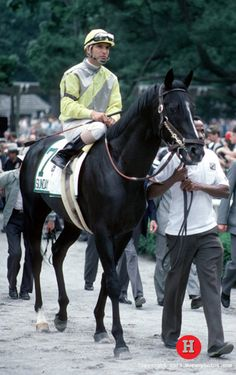 Sunday Silence: The Star No One Wanted - America's Best Racing. The Jockey Club