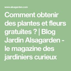 Comment obtenir des plantes et fleurs gratuites ? | Blog Jardin Alsagarden - le magazine des jardiniers curieux Math, Magazine, Gardening, Garden, Beautiful Gardens, Backyard Farming, Buy Seeds, Math Resources, Lawn And Garden