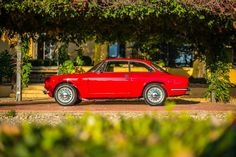 An Alfa Romeo Giulia GT Junior Makes Any Day Magic • Petrolicious