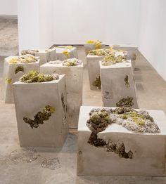 dana barnes endolith casts collective design new york design weekdana barnes references lichen life for endolith casts seating series  화분대신 옷을 놔둔다거나.