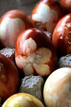 how to dye eggs with onion skin & flowers from www.lifesabatch.com.