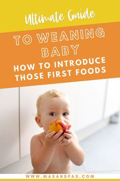 Ready to start weaning your baby? Whether you want to try baby led weaning or stick to purees, this guide provides easy tips to help moms introduce solid foods to baby. Learn when it's safe to start weaning, what first foods to try and which to avoid, and how to establish a schedule and routine so that your baby can have an easy adjustment from milk to fruits, vegetables, meats, and more. #babyweaning #babyledweaning #weaningtips #babyfirstfoods #firstfoods Baby Led Weaning Breakfast, Baby Led Weaning First Foods, Baby First Foods, Baby Weaning, Feeding Baby Solids, Solids For Baby, Baby Health, Kids Health, Weaning Plan
