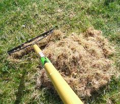 You can do a double service of aerating your lawn while improving your compost by using lawn thatch.
