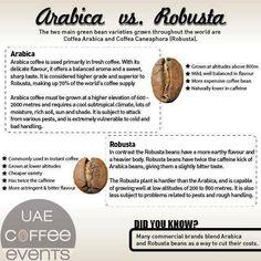 Arabica vs robusta