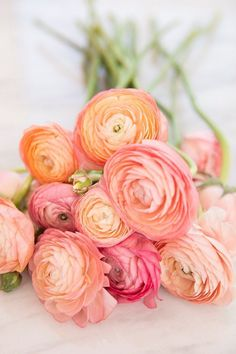 We're counting down the top 111 most beautiful flowers rare pretty exotic and unique flowers in the world. such as roses orchid flower etc arrangements bouquet flowers 621426448558380464