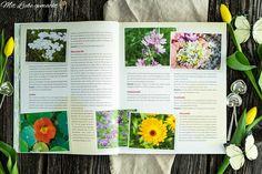 Mein Buch – Einfach natürlich! Durch die Jahreszeiten mit der Natur… Chutneys, Natural Decorating, Vodka, Organic Beauty, Chutney
