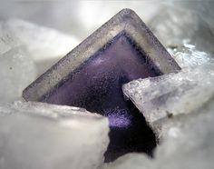 Purple zoned Fluorite on CalciteLimites Quarry, Belgium