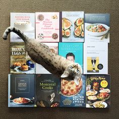 Cookbooks galore! Lots of great ones here from 2015.