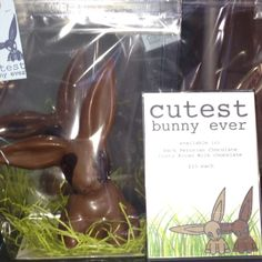 SOMA Chocolate Store Toronto Cutest Bunny Ever, Chocolate Stores, Cute Bunny, Toronto, Easter, Spaces, Easter Activities