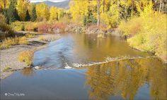 Fall on the Bulkley River 2015, Houston, BC. Travel Houston, British Columbia with Brian Vike.