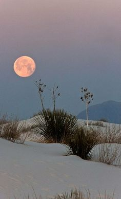 Full moon at White Sands National Park, New Mexico, U. S (by kinoshaman on Flickr)