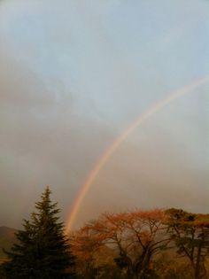 菰野地区 虹