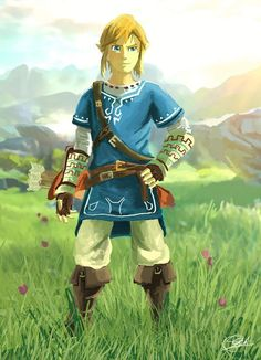Image result for link breath of the wild