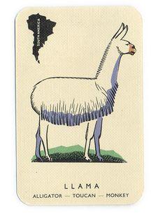 I <3 llamas.