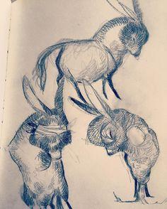 Mas burros. by ohnonatalie