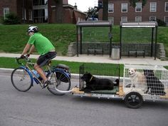 My dogs would love this! Carrying two Dogs in Kennels on a bicycle trailer Dog Bike Trailer, Motorcycle Trailer, Pimp Your Bike, Bike Cart, Biking With Dog, Electric Tricycle, Cargo Trailers, Cargo Bike, Touring Bike