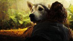 Felizes os cães, que pelo faro descobrem os amigos…  __Machado de Assis