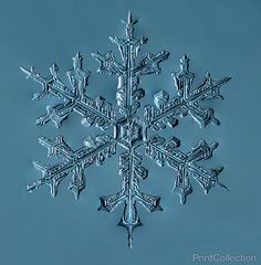Photographer Douglas Levere uses a homemade camera-microscope rig to take gorgeous photographs of snowflakes during winters in his home base of Buffalo, New York. Levere created his custom microgra...