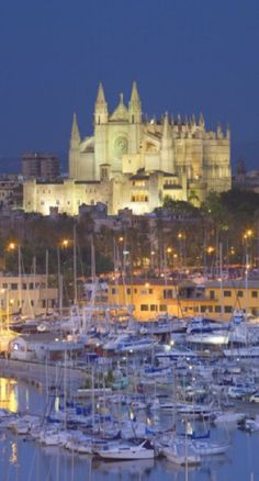 Palma de Mallorca, Spain - by Neil Farrin