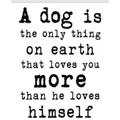 I've never seen a truer statement. I love my dog to the moon and back.