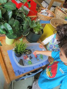 """""""Then there was the wet frog play area right beside it that included frogs in the different stages of development from tadpole to full grown frog.  I also included water beads, a few blue and a lot of clear beads.""""Strong Start Blog"""