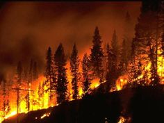 USFS: Fires may progress to Curry County
