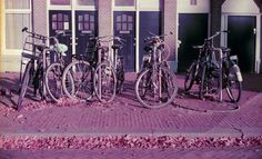 Iconic walk of the city #Amsterdam #35mm #LomographyPurple #analog #analoguephotography #ShootFilm #filmcommunity #staybrokeshootfilm #heyfsc #helloCFPG #Lomochrome #Lomography #bikes #pellicolamag  Camera: Canonet QL19 Film: Lomography Lomochrome Purple Come visit me at my LomoHome:http://bit.ly/adg_lomo  @lomography @lomographicsociety @filmshooterscollective @art.film @whattaroll @hylasmagazine @FlakPhoto @emulsivefilm