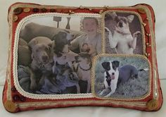 PILLOW ART by LEE  Custom Photo Pillow of Your Pet  Made with