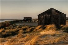 NP202 Norfolk beach - sand dunes - shoot location - long grasses - Marshes