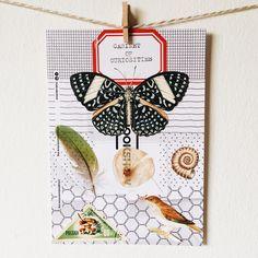 A fun postcard by Little envelope #cabinetofcuriosities #handmadepostcard #postcard