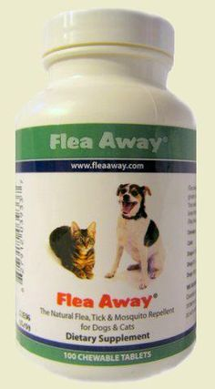 Natural Flea Amp Tick Control No Poisons On My Dogs