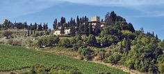 Castello di Verrazzano - Winery about 30 minutes from Florence.