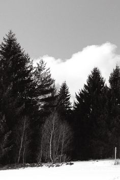 Painted 1/3 • Above Bayerisch Eisenstein, Bavarian Forest, Germany • landscape|panorama|panoramic|large format|print|original|photography|image|interior design ideas|wall decor