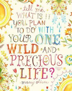 one wild & precious life