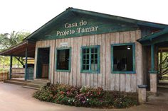 Casa do Projeto TAMAR no Beto Carrero World   Blog Beto Carrero World, Garage Doors, Shed, Outdoor Structures, Outdoor Decor, Blog, Home, Places, Log Projects