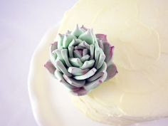 Sugar Succulent Perfect for Cake Toppers and Food by CakeHeroNYC, $20.99