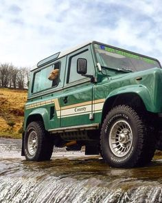 Land rover Defender 90 with dog.