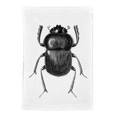 Natural History: The Origin of Style  Black Beetle Tea Towel