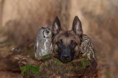 photo by Tanja Brandt