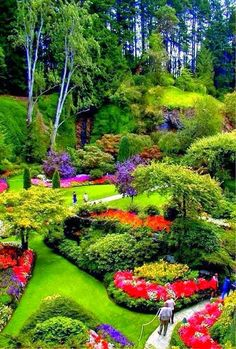 Butchart Gardens, Victoria, B. When I was quite young so I used to call it Butt-chart gardens… *facepalm* Butchart Gardens, Victoria, B. When I was quite young so I used to call it Butt-chart gardens… *facepalm* Magic Garden, Dream Garden, Garden Whimsy, Parcs, Amazing Gardens, Famous Gardens, Most Beautiful Gardens, Garden Inspiration, Beautiful Landscapes