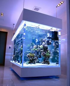 39 fabulous interiors home design with fascinating aquarium 12 Marine Fish Tanks, Marine Aquarium, Reef Aquarium, Aquarium Fish Tank, Marine Tank, Acrylic Aquarium, Cool Fish Tanks, Saltwater Fish Tanks, Saltwater Aquarium