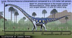 Information about the dinosaur Mamenchisaurus and other prehistoric creatures. Prehistoric Wildlife, Prehistoric World, Prehistoric Creatures, Jurassic Park Toys, Jurassic World, Dinosaure Herbivore, Thing 1, Dinosaur Art, Extinct Animals